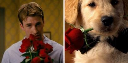 Chris Evans e golden retriever segurando rosas vermelhas. (Foto: Twitter/@retrievans)