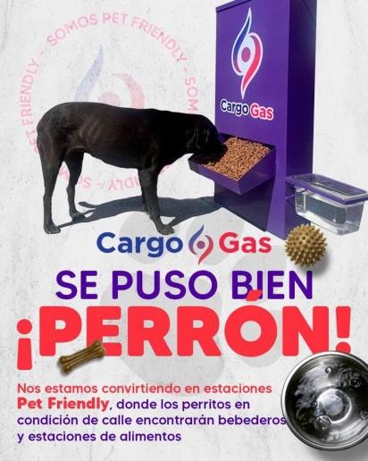 Os cães tem sido bem tratados nos postos Cargo Gas. (Foto: Facebook/Grupo CargoGas)