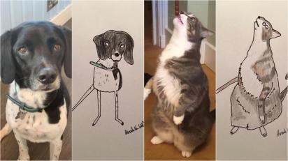Homem cria retratos cômicos de animais de estimação e em troca os donos realizam doações para instituição de caridade. (Foto: Facebook/Pet Portraits By Hercule)
