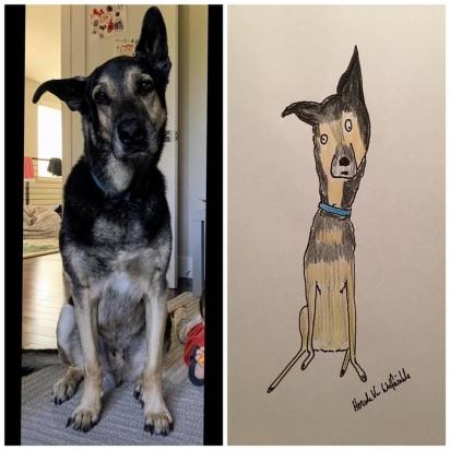 A dona não sabia o que esperar, mas certamente não era esse desenho. (Foto: Facebook/Pet Portraits By Hercule)