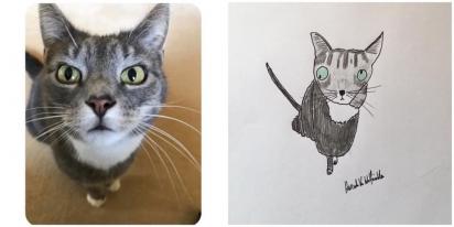 Este é o gato Marley, ele gosta de fazer cócegas na barriga e comer sonhos. (Foto: Facebook/Pet Portraits By Hercule)