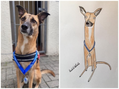 Esse cão está orgulhoso na foto com sua medalha Turning Tides Go The Distance. (Foto: Facebook/Pet Portraits By Hercule)