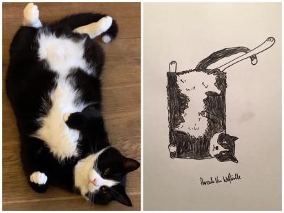 Esse gatinho adora ficar de barriga para cima. (Foto: Facebook/Pet Portraits By Hercule)