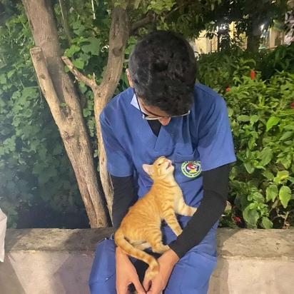 A gatinha se aproximou de Ahmed num raro momento de descanso do plantão.   (Foto: Arquivo Pessoal/Ahmed Flaty)