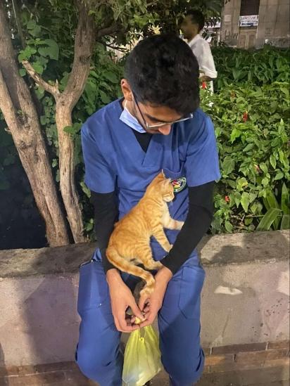 Ao subir no colo de Ahmed a gatinha o olhou e depois descansou em seu colo. (Foto: Arquivo Pessoal/Ahmed Flaty)