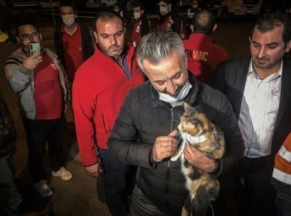 Gatinha foi encontrada em meio aos escombros, causado por terremoto na Turquia. (Foto: Reprodução/Hurriyet)