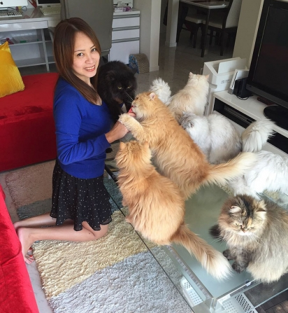 Michelle com os seus gatos. (Foto: Instagram/12catslady)