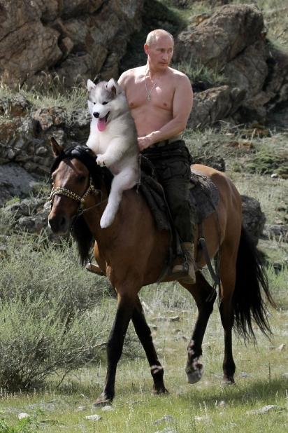 Companheiro do Putin. (Foto: Divulgação/BoredPanda)