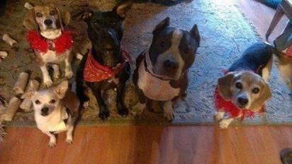 Rose com seus amigos. (Foto: Facebook/Justice for Rose)