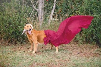 Lily toda exuberante com uma saia ao vento. (FOTO: SHAUNA KIELY)