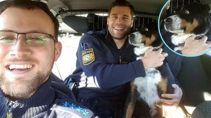 Cachorro que havia fugido tem reação hilária ao ser resgatado por policiais. (Foto: Facebook/Polizei Mittelfranken)
