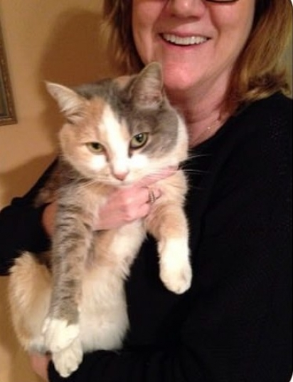 Cheryl abraçada com seu gatinho Kitty, após o mal-entendido. (Foto: Reprodução/Mercury Press & Media)