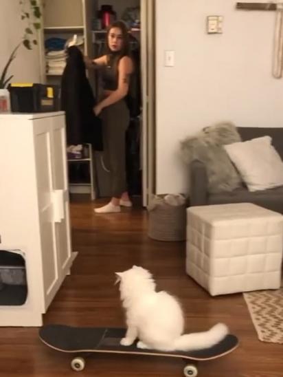 A dona leva um susto ao perceber o gatinho passando pela sala com o skate. (Foto: Instagram/yeti_ready)