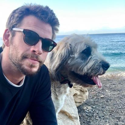 Liam Hemsworth, ator, é o pai de dois filhotes resgatados muito sortudos, Tani e Dora. (Foto: Instagram/liamhemsworth)