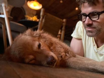 Baxter teve a sorte de ser adotado por Ryan Reynolds em 2009. (Foto: Instagram/vancityreynolds)