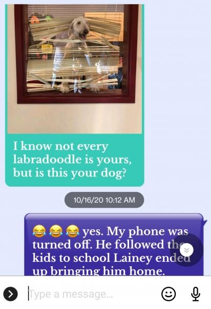 Mensagem seguida da foto que o vizinho de Karen Manthey lhe enviou. (Foto: Arquivo Pessoal/Karen Manthey)