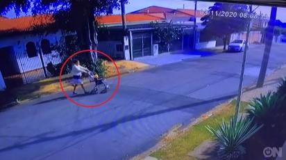 Mulher abandona 6 filhotes nas ruas de Campinas, São Paulo. (Foto: Reprodução/Arquivo Pessoal)