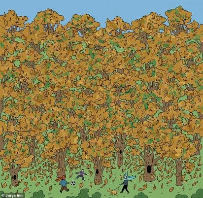 Esse desafio tem a seguinte missão: encontrar um esquilo à espreita em um mar de folhas marrons nesta ilustração alegre do ar livre. (Foto: Reprodução/Jurys Inn)