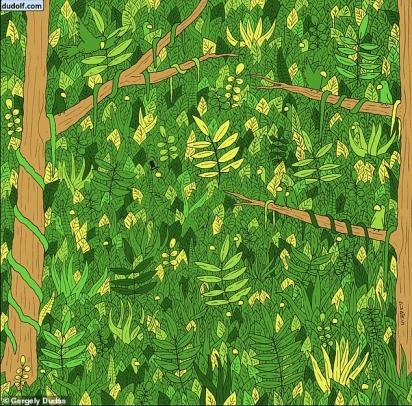 O cenário arborizado com os mesmos tons esverdeados dificulta a localização de uma cobra que, adianto, está bem escondida. (Foto: Reprodução/Gergelu Dudas)