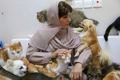 Maryam al-Balushi cuida dos seus animais em Mascate, Omã, no Oriente Médio. (Foto: AFP via Getty Images)