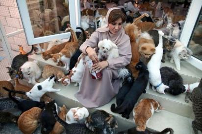 Com o tempo Maryam al-Balushi cedeu a ideia de ter um animal de estimação e adotou um gato. (Foto: AFP via Getty Images)