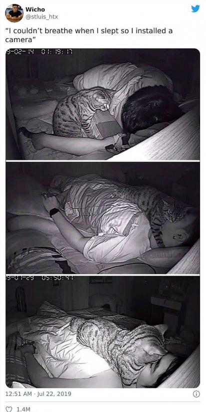 Esse dono não conseguia respirar direito à noite e resolveu instalar uma câmera para descobrir o motivo. Bem, descobriu. (Foto: Twitter/stluis_htx)