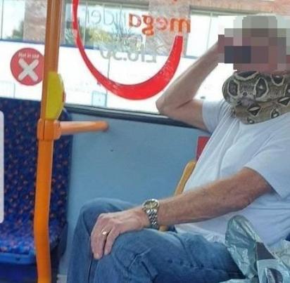 A princípio os passageiros acharam ser uma máscara customizada. (Foto: Arquivo Pessoal/Alison Jones)
