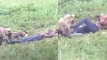 Após uma noite de bebedeira, homem acorda na manhã seguinte sendo 'fungado' por urso selvagem. (Foto: Reprodução Youtube/ViralOne)