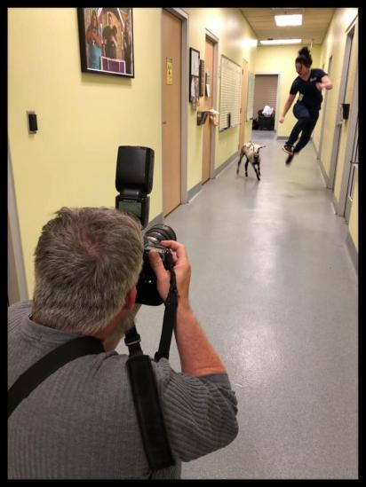 Ursula e Nina fazendo uma sessão de fotos. (Foto: Facebook/Longview Animal Care and Adoption Center)