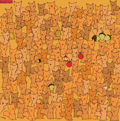 Desafio: encontrar o rato escondido em meio a um grupo de esquilos. (Foto: Dudolf/Gergely Dudás)