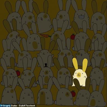 Resposta do desafio do coelho. (Foto: Facebook/Dudolf)