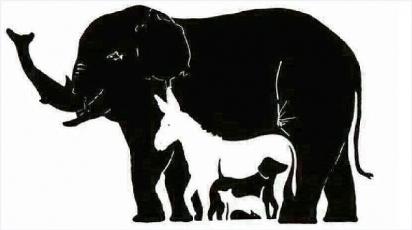 Desafio: encontrar 15 animais nessa imagem. (Foto: Reprodução/Daily Mail)