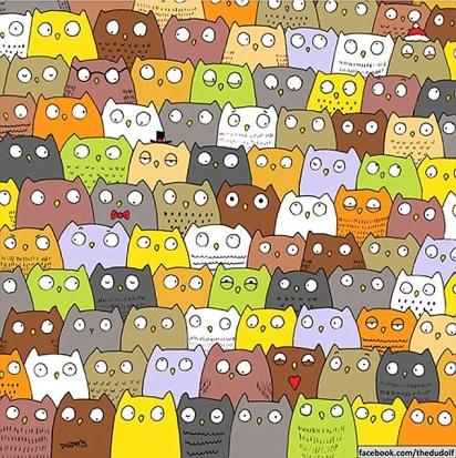 Desafio: encontrar o gato em meio as corujas. (Foto: The Dudolf)