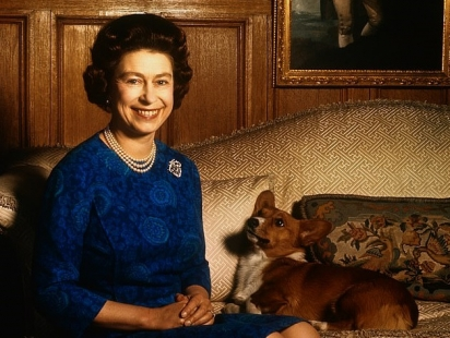A rainha sempre tenta alimentar seus cães (na foto com um de seus cães), misturando sua ração com uma colher e garfo, de ingredientes trazidos em uma bandeja por um garçom. (Foto: Reprodução/Bettmann Archive)