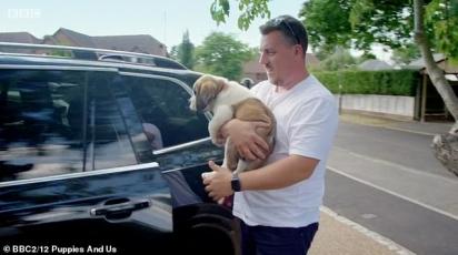 Depois que Gemma e Darren trouxeram Woody para casa, ele rapidamente se acomodou e as crianças foram vistas bajulando seu novo animal de estimação. (Foto: BBC)