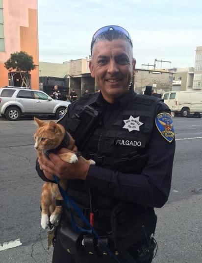O que fez o homem desistir da ideia de interromper a vida foi a chegada da família com o seu gato de estimação. (Foto: CHP San Francisco)