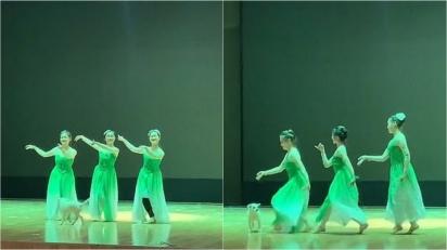As alunas estavam ensaiando uma coreografia, quando o cãozinho invade o palco e decide acompanhá-las na dança. (Foto: Douyin/C19991115)