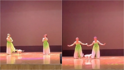 Uma das bailarinas disse que o cãozinho gostou tanto de acompanhar a dança que ficou por mais de uma hora no palco. (Foto: Douyin/C19991115)