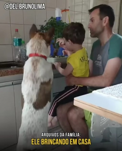 O cão foi adotado a pouco tempo e estava muito feliz com a sua família. (Foto: Facebook/Delegado Bruno Lima)