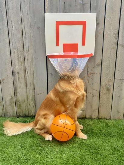 Finn com uma cesta de basquete. (Foto: Arquivo pessoal/Jean Frates)