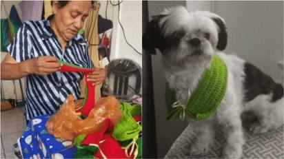 Mulher tem como renda vendas de cachecóis que ela tricota para cães e gatos. (Foto: Instagram/sefelizguate)
