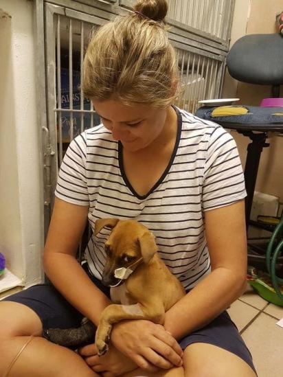 Ao ver a cachorrinha sofrendo o menino foi atrás de ajuda. (Foto: Facebook/Tin Can Town)