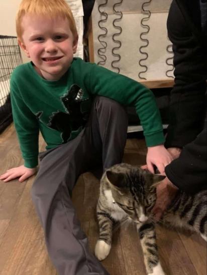 O filho de Caylee tentou chamar várias vezes a atenção da mãe, mas a mulher só percebeu o gatinho quando o cachorro da família latiu insistentemente. (Foto: Arquivo Pessoal/Caylee Gilson)