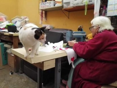 A dona Dora tem como ajudante e companheira a gatinha Nikki. (Foto: Reprodução/Wapa)