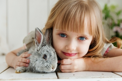 Pesquisa investigou o comportamento dos coelhos antes e após uma cirurgia ortopédica, em que demonstra as alterações nos comportamentos causadas pela dor pós-operatória. (Foto: Divulgação/Pixabay)