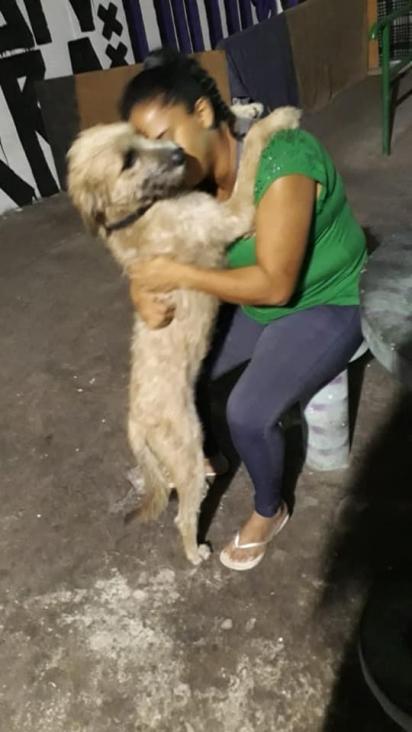 Vanessa de 37 anos, mora em São Paulo (SP) e foi despejada de casa com os seus 3 cachorros. (Foto: Facebook/ Isaiane Silva via Eu amo cachorros)