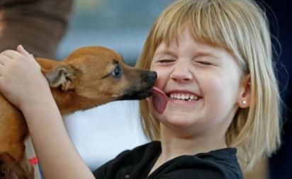 A cachorrinha Lucky encontrou um lar verdadeiramente feliz. (Foto: Facebook/@NorthTexasEmergencyPetClinic)