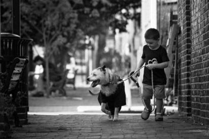 A amizade que os dois formaram tem rendido lindas histórias. (Foto: Facebook/Kathleen Marie via Dogspotting Society)