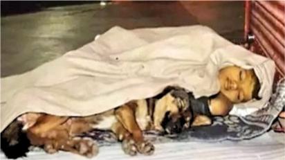 Órfão, garoto dorme em trilhos na companhia do seu cachorro. (Foto: Twitter/@timesofindia)
