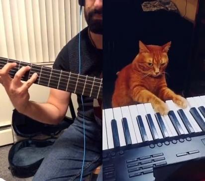 O dueto de Marsel Gilmanov e seu gato Barney tem alegrado os dias dos internautas. (Foto: Reprodução/TikTok)